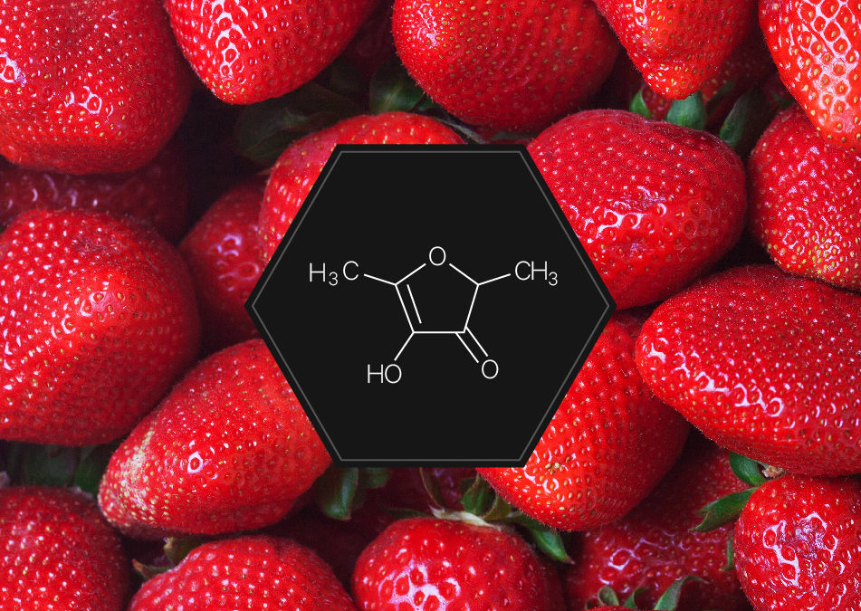 Strawberry : a surprising twin
