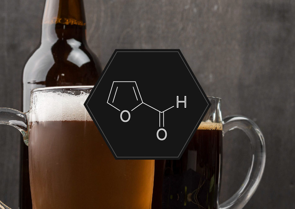 Dark beer: NOT ONLY HIGH IN ALCOHOL %