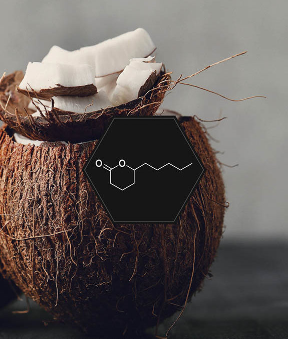 COCONUT: SWEET OR SALTY ?